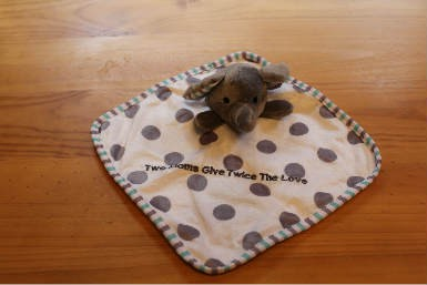 """Mini Baby Blanket """"Two Moms Give Twice The Love"""""""